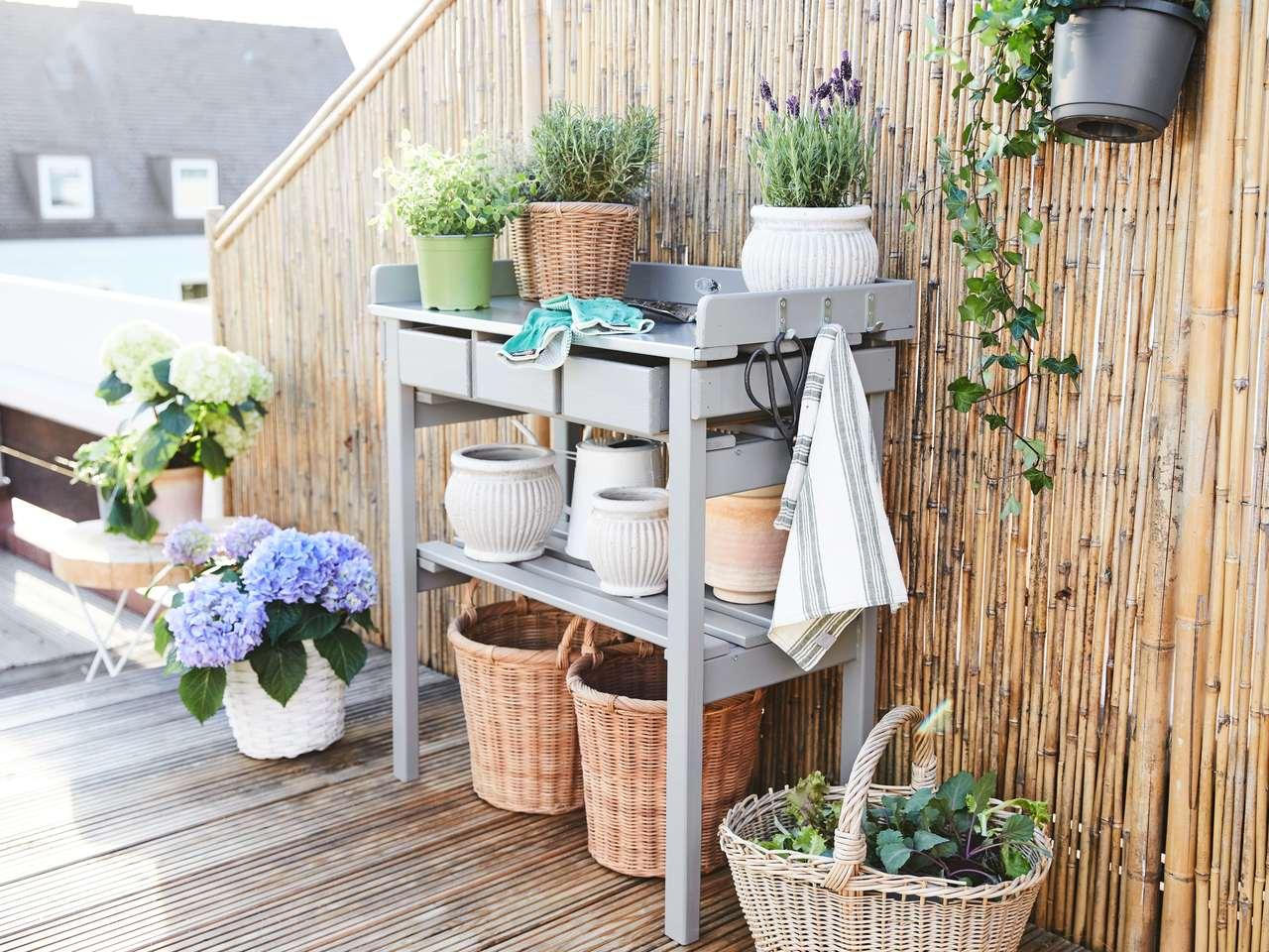rośliny w aranżacji balkonu i tarasu