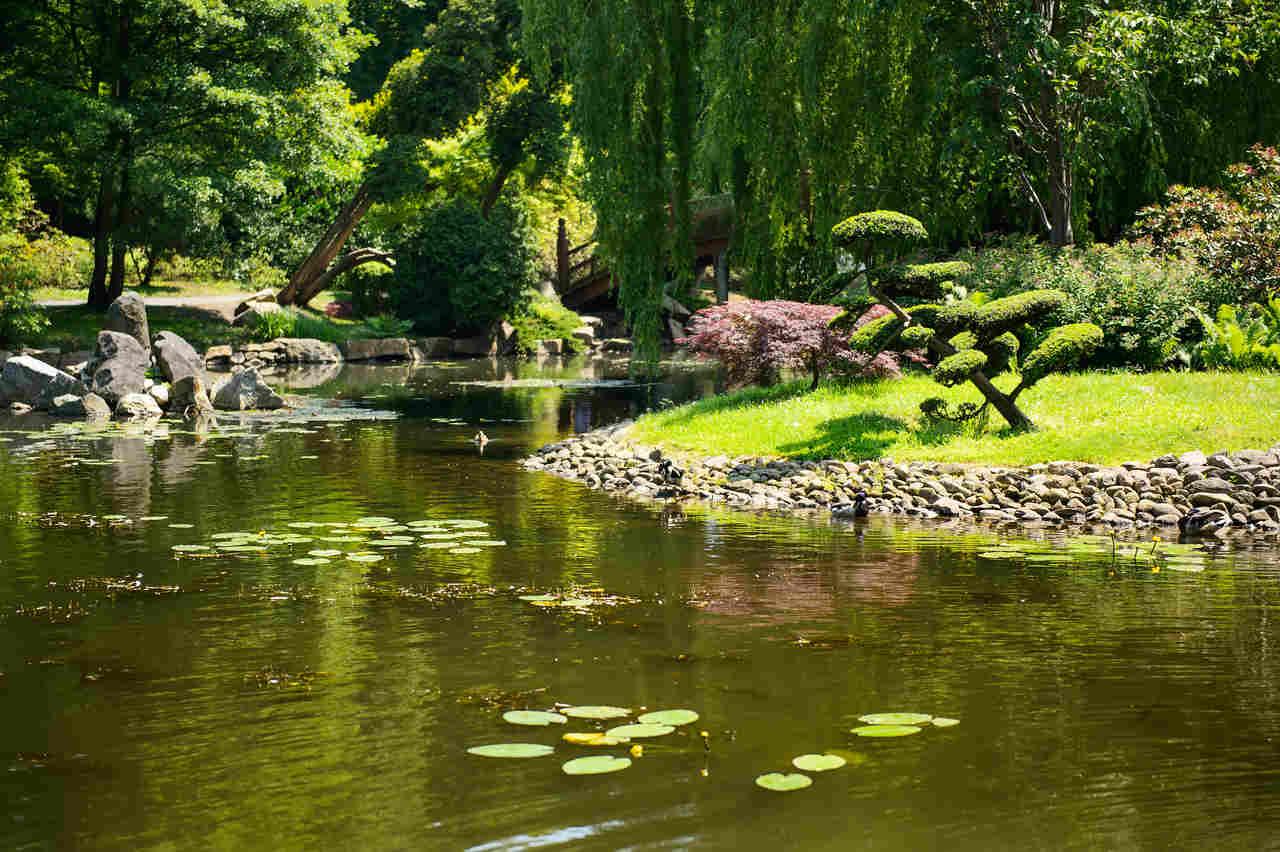ogrod botaniczny wroclaw